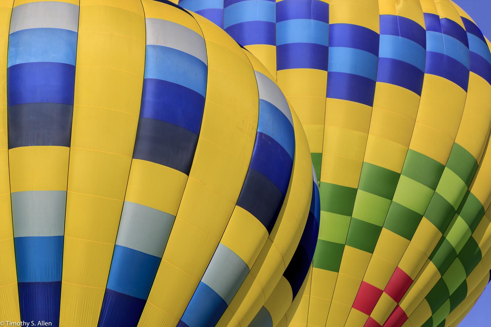 Sonoma County Hot Air Balloon Classic Windsor, CA, U.S.A. June 30, 2014