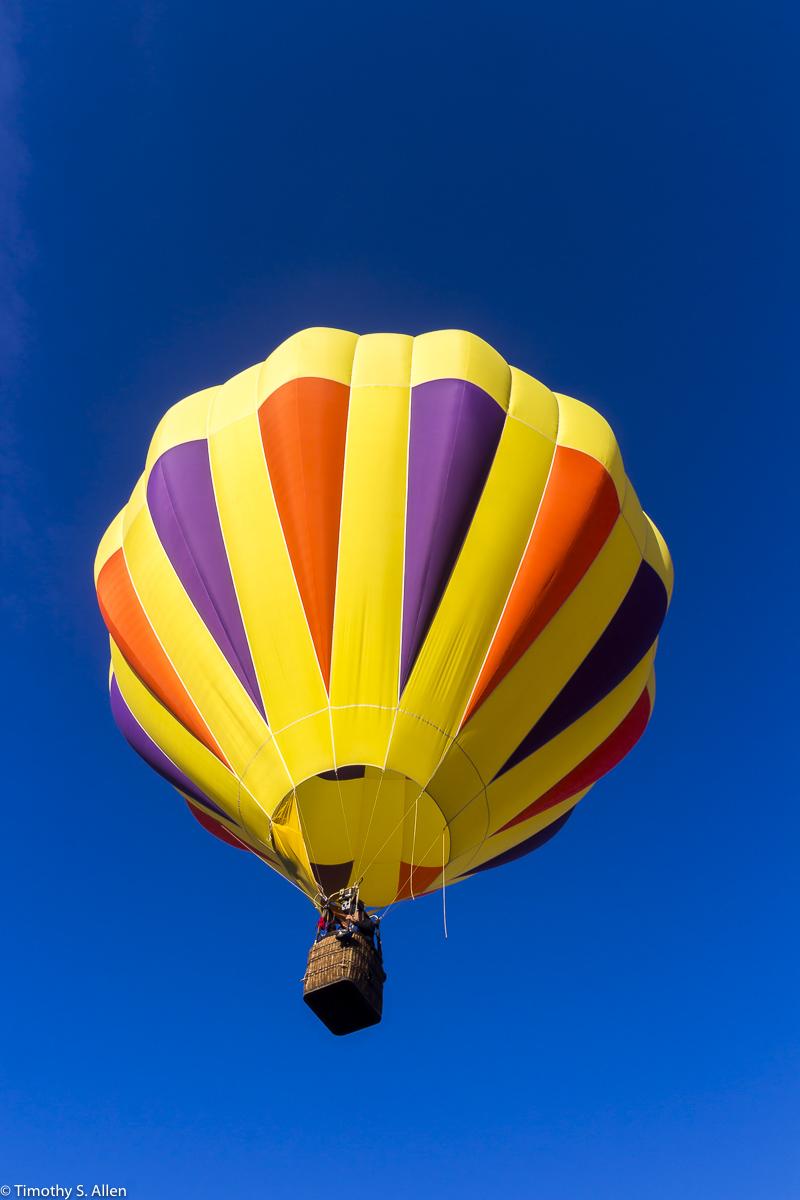Sonoma Hot Air Balloon Classic Windsor, CA, U.S.A. June 14, 2014