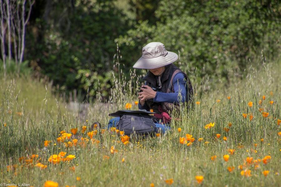 Crane Creek Regional Park Santa Rosa, CA, U.S.A. April 19, 2017