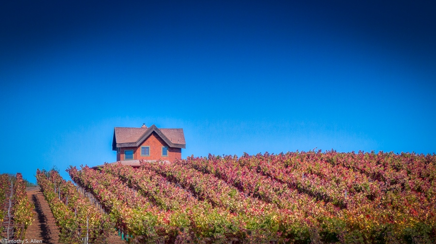 Sonoma County, Wine Country, California, U.S.A. October 9, 2016