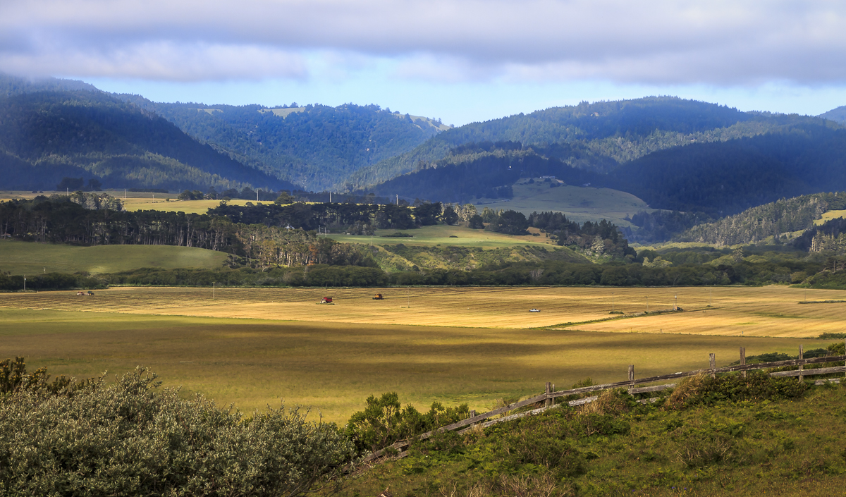 Farm Near U.S. Hwy 1 in Mendocino County, CA, U.S.A. May 10, 2017