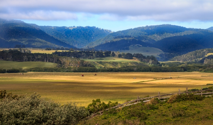 Farm Near U.S. Hwy 1 in Mendocino County, CA, U.S.A. May 10, 2017