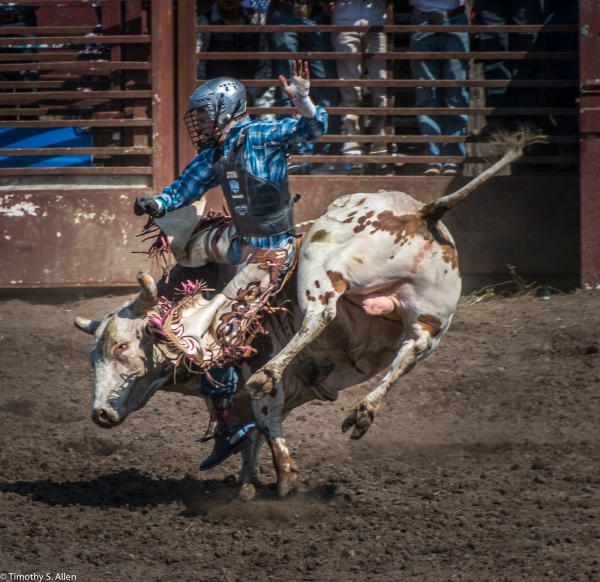 Russian River Rodeo Duncan Mills, CA, U.S.A. June 24, 2017