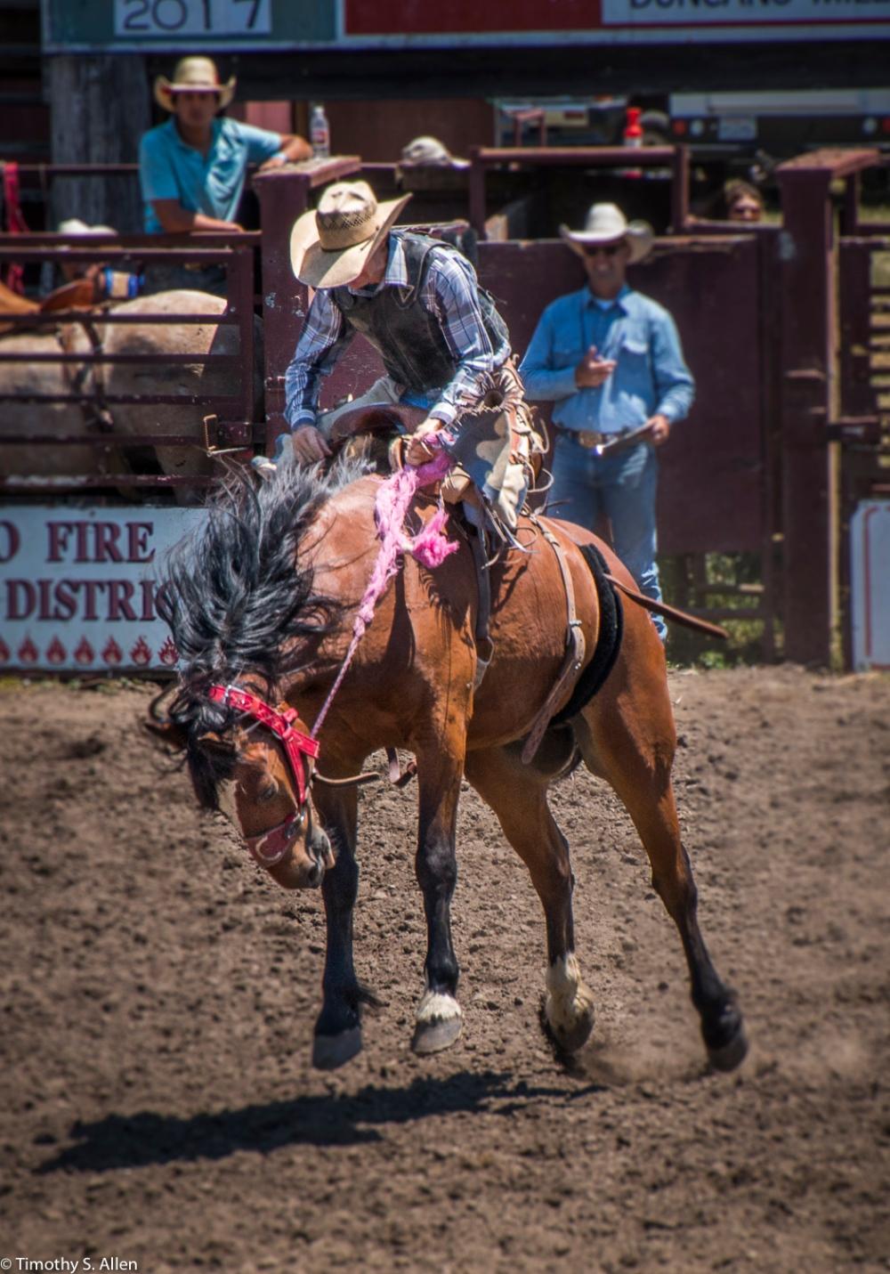 Russian River Rodeo - Duncan Mills, CA, U.S.A. June 24, 2017