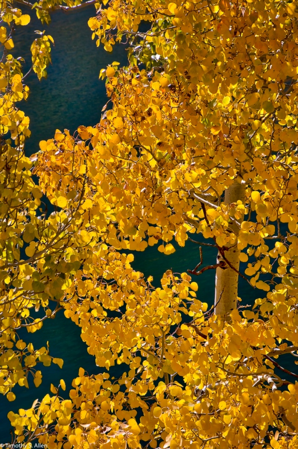 Lundy Lake, Eastern Sierra Nevada Mountains, CA, U.S.A. October 14, 2017