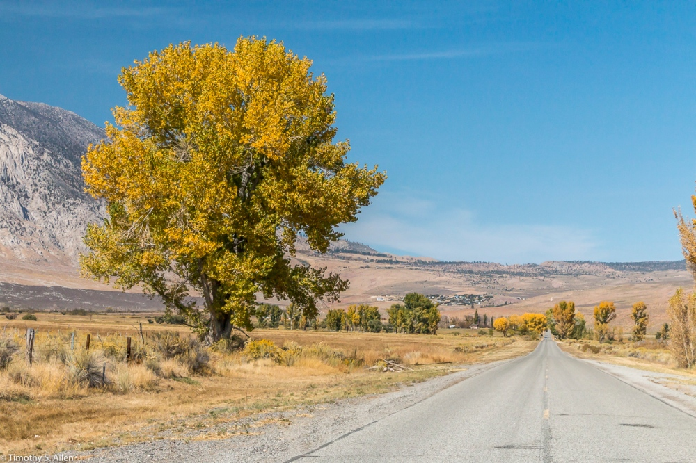 Rock Creek Road is Off of US Hwy 395 on the Eastern Sierra Nevada Mountains, California, U.S.A. October 15, 2017