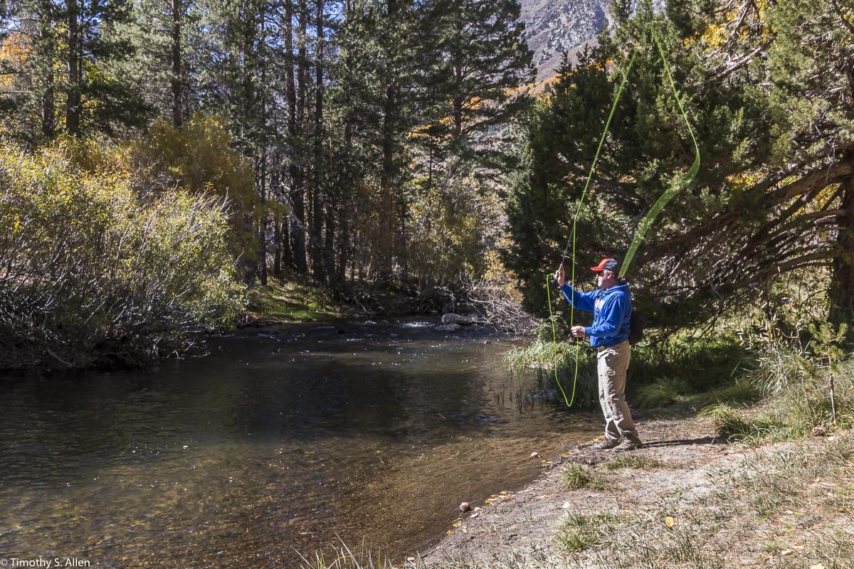 June Lake Loop, Eastern Sierra Nevada Mountains, CA, U.S.A. October 13, 2017
