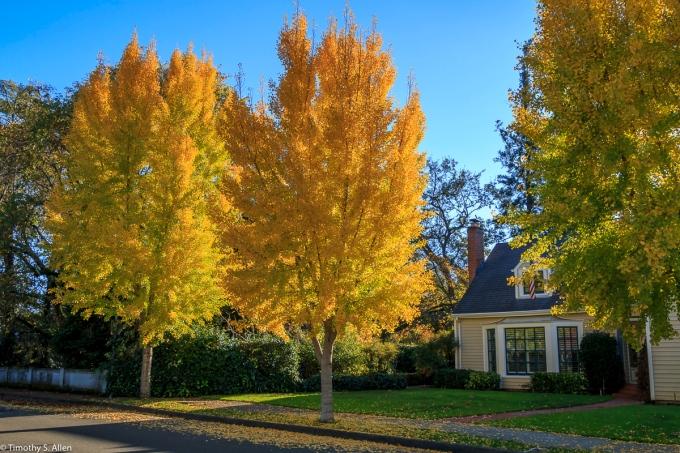 Santa Rosa, CA, U.S.A. November 11, 2017