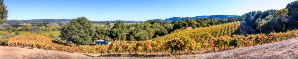 Dry Creek Area Healdsburg, CA, U.S.A. October 8, 2017