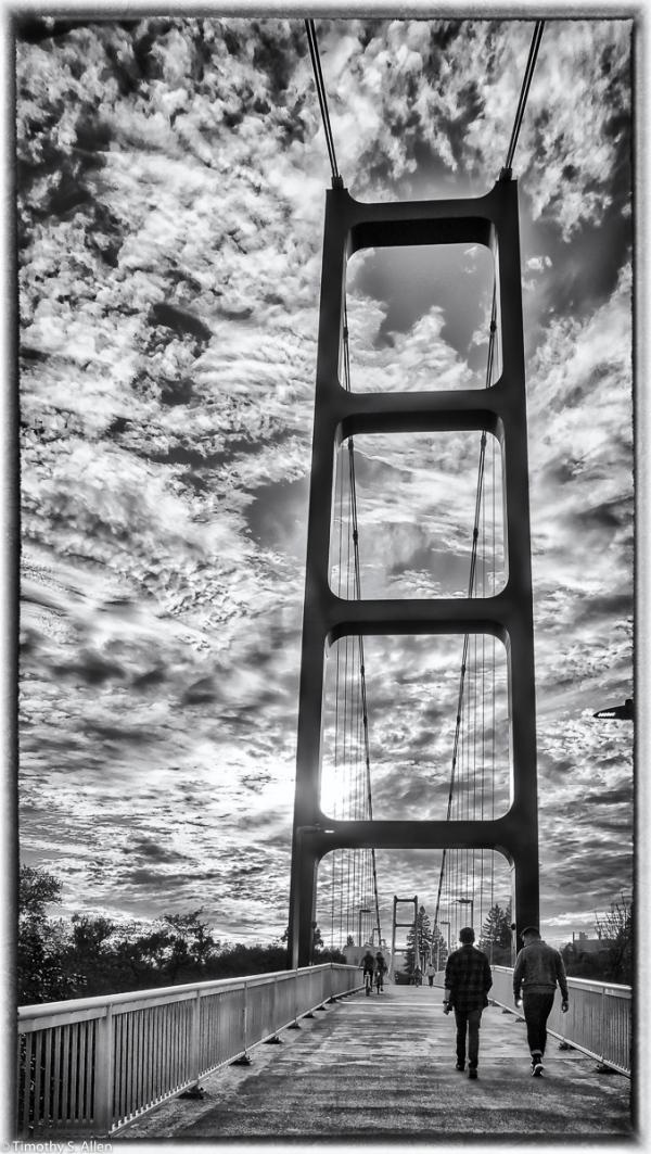 Model of the Golden Gate Pedestrian Bridge Crossing the American River Sacramento, CA, U.S.A. November 24, 2017