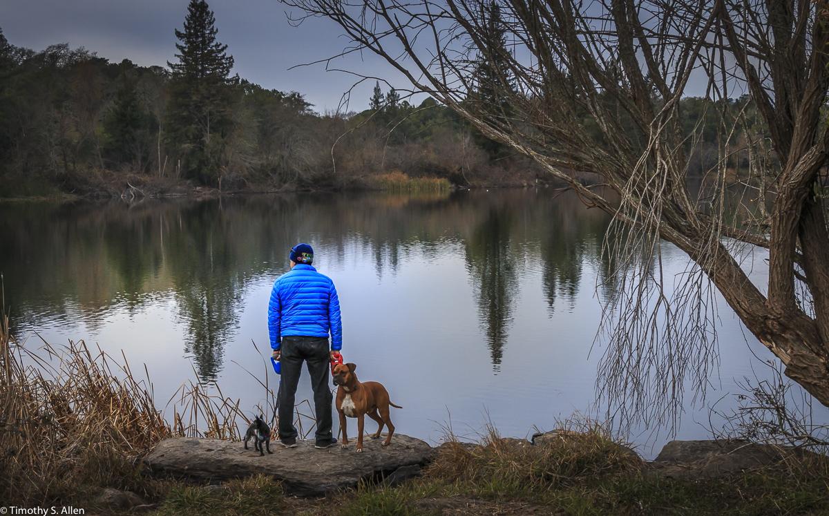Traditional Color Image Spring Lake, Spring Lake Regional Park Santa Rosa, CA December 31, 2017
