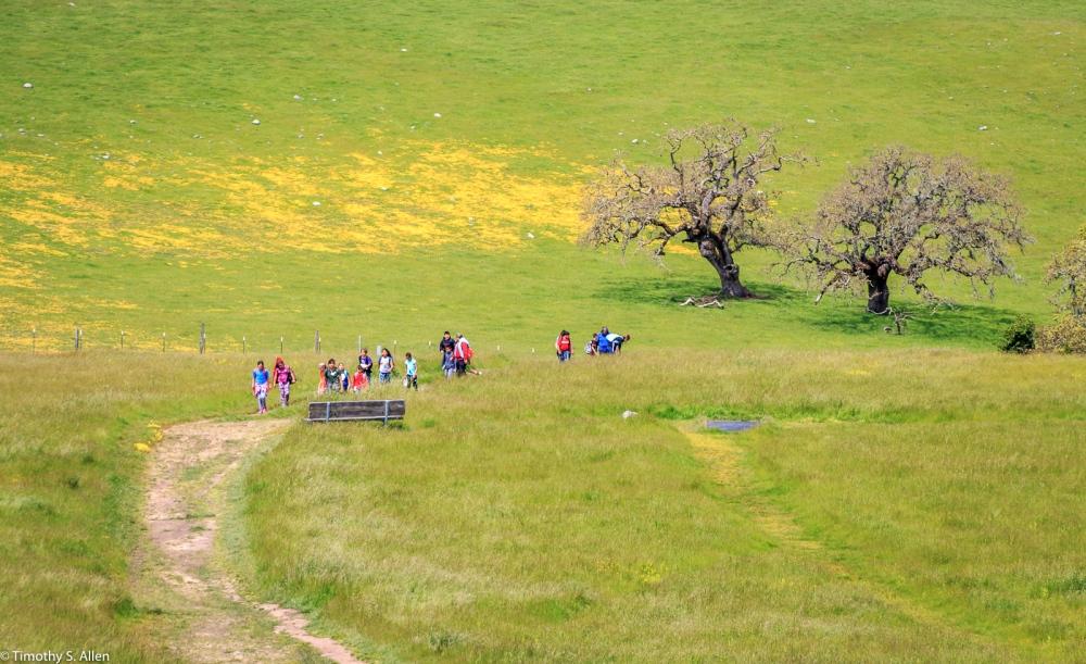 Students Learning About Nature Crane Creek Regional Park Santa Rosa, CA, U.S.A. April 17, 2017