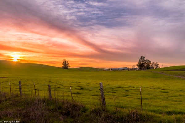 A Farm Off of Stage Gulch Road CA Hwy 116, Sonoma County, CA, U.S.A. January 28, 2018