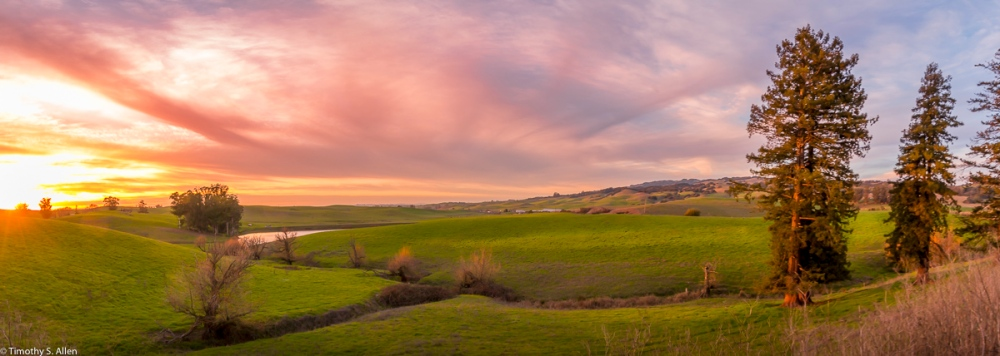 Southern Sonoma County Off of Stage Gulch Road CA Hwy 116, Sonoma County, CA, U.S.A. January 28, 2018