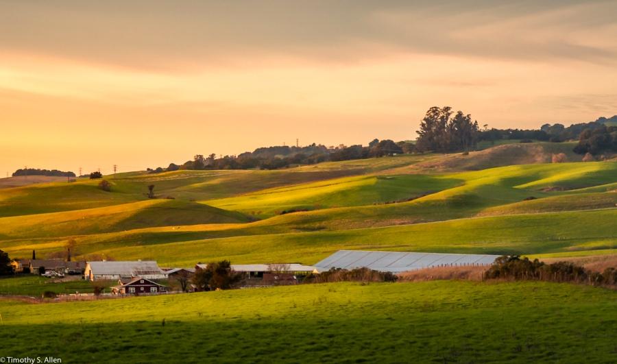 Late Afternoon Light - Old Adobe Road, Petaluma, Sonoma County, CA, U.S.A. January 30, 2018
