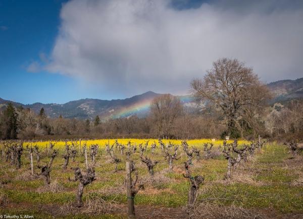 California Hwy 129, Calistoga, Napa County, CA, U.S.A February 18, 2018
