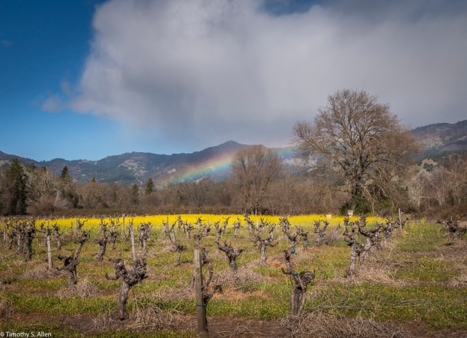 California Hwy 129, Calistoga, Napa County, CA, U.S.A February 18, 2018