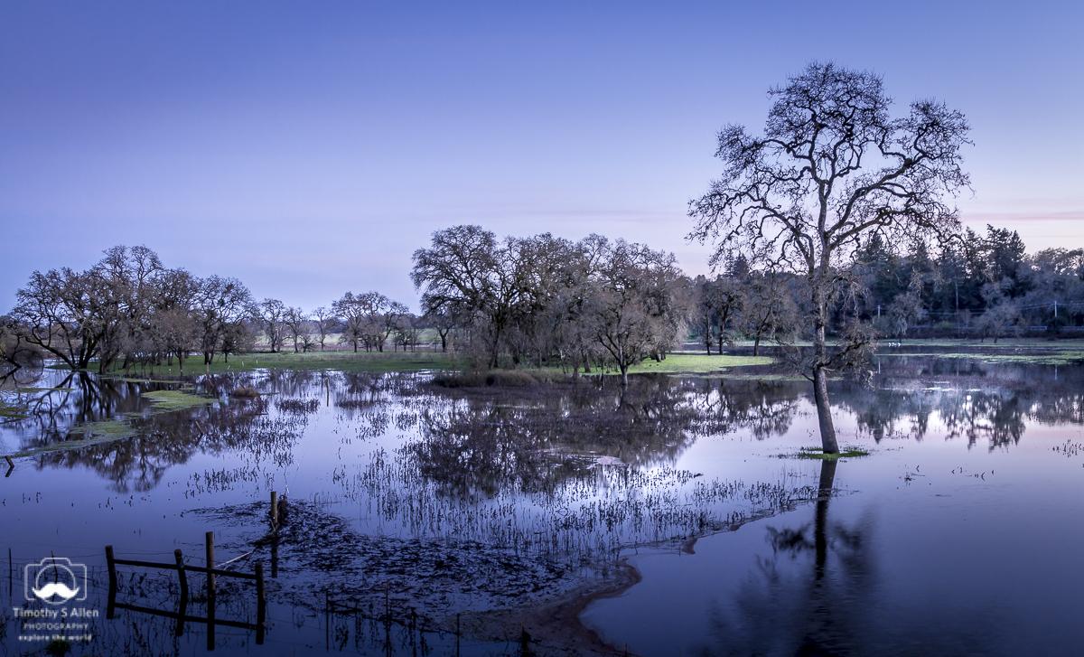 Laguna de Santa Rosa Wetlands Occidental Road, Santa Rosa, Sonoma County, CA, U.S.A. March 4, 2018