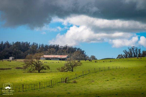 Farm Land East of Stony Point Road, Cotati, CA, U.S.A. March 17 2018