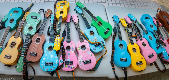 A panoramic of ukuleles sitting on tables after the performance by the Cheng long Elementary Students. These ukuleles were purchased at a ukulele factory in near by Shueilin Village. Cheng long, Kohou Township, Yunlin County, Taiwan. April 13, 2018