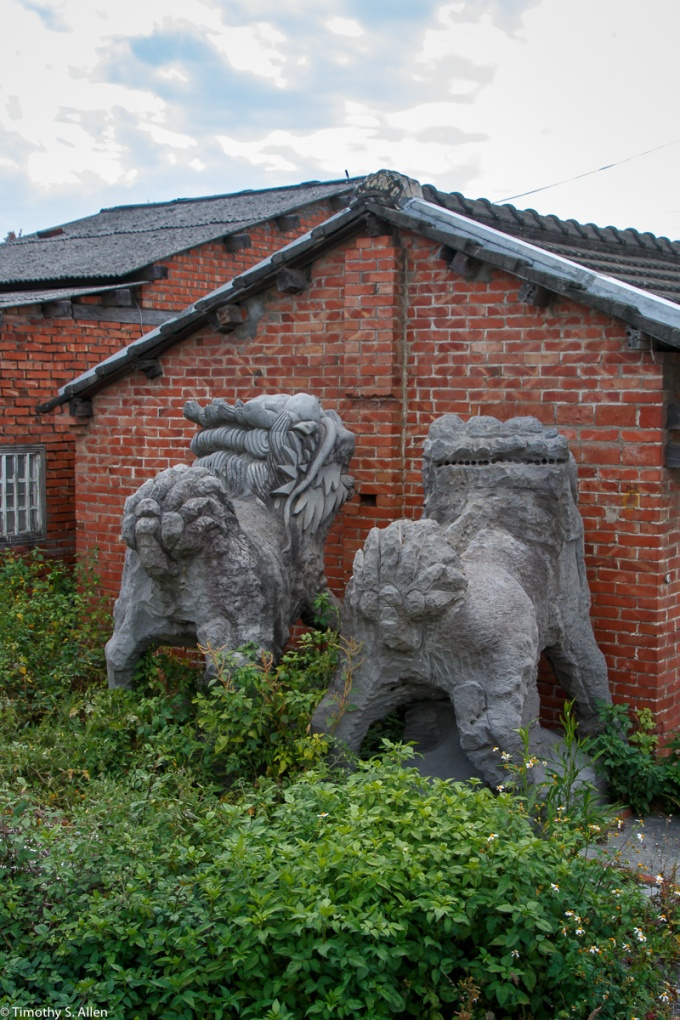 A pair of lions were partially completed by a master carver and he was paid a small amount by the future owner. The owner's business failed so the master could not be paid to complete the lions. They were moved to this location when someone bought the property where the business was located. Some child asked one of the villagers if the lions were naughty and being punished by facing the wall. In fact unless in front of a temple, or business, lions are not allowed to face outward. Cheng long Village, Kohou Township, Yunlin County, Taiwan April 21, 2018