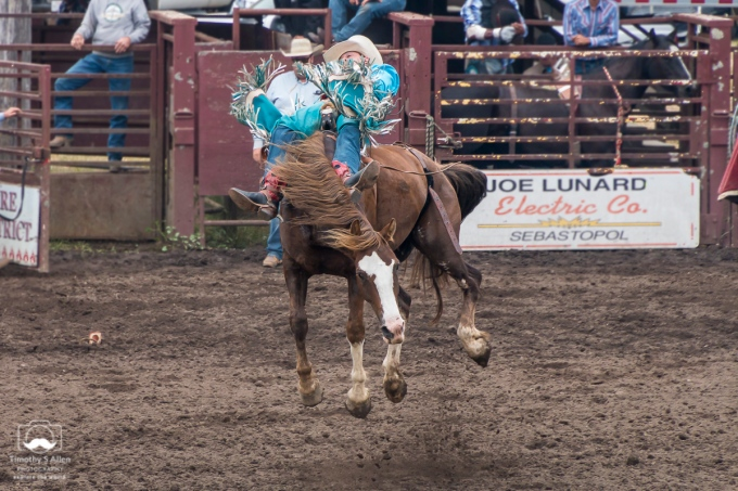 Bronco Riding - Russian River Rodeo - Duncans Mill, CA, U.S.A. June 25, 2018