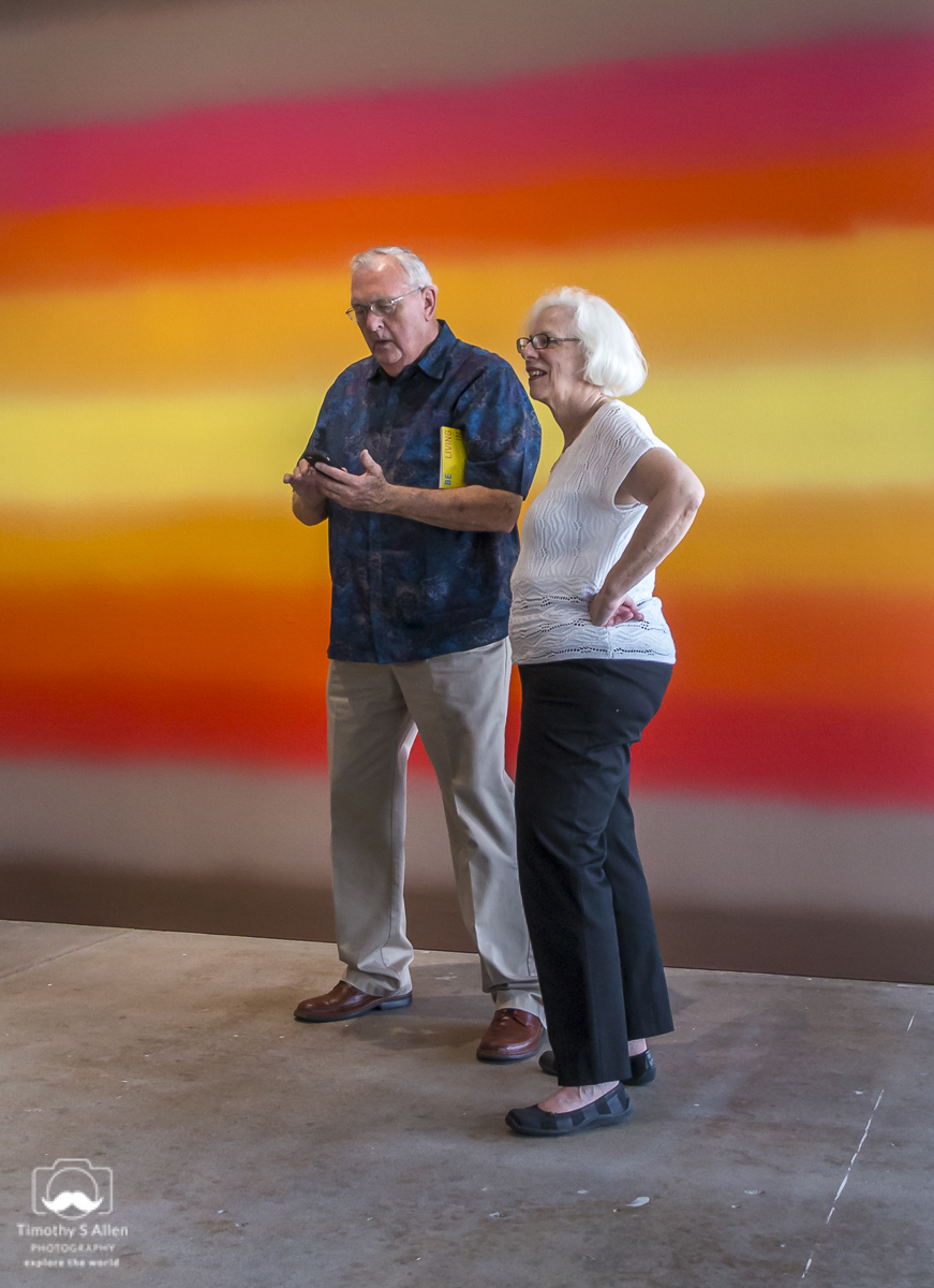 This image of these two people was shot in a gallery. I had the camera hanging from a shoulder strap and I was taking photographs without looking into the camera. The technique is common for street photography. DiRosa, Napa, CA, U.S.A. June 30, 2018