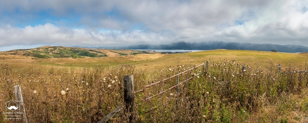 A view of Tamales Bay from Marshall-Petaluma Road Sonoma County, California, U.S.A. July 1, 2018