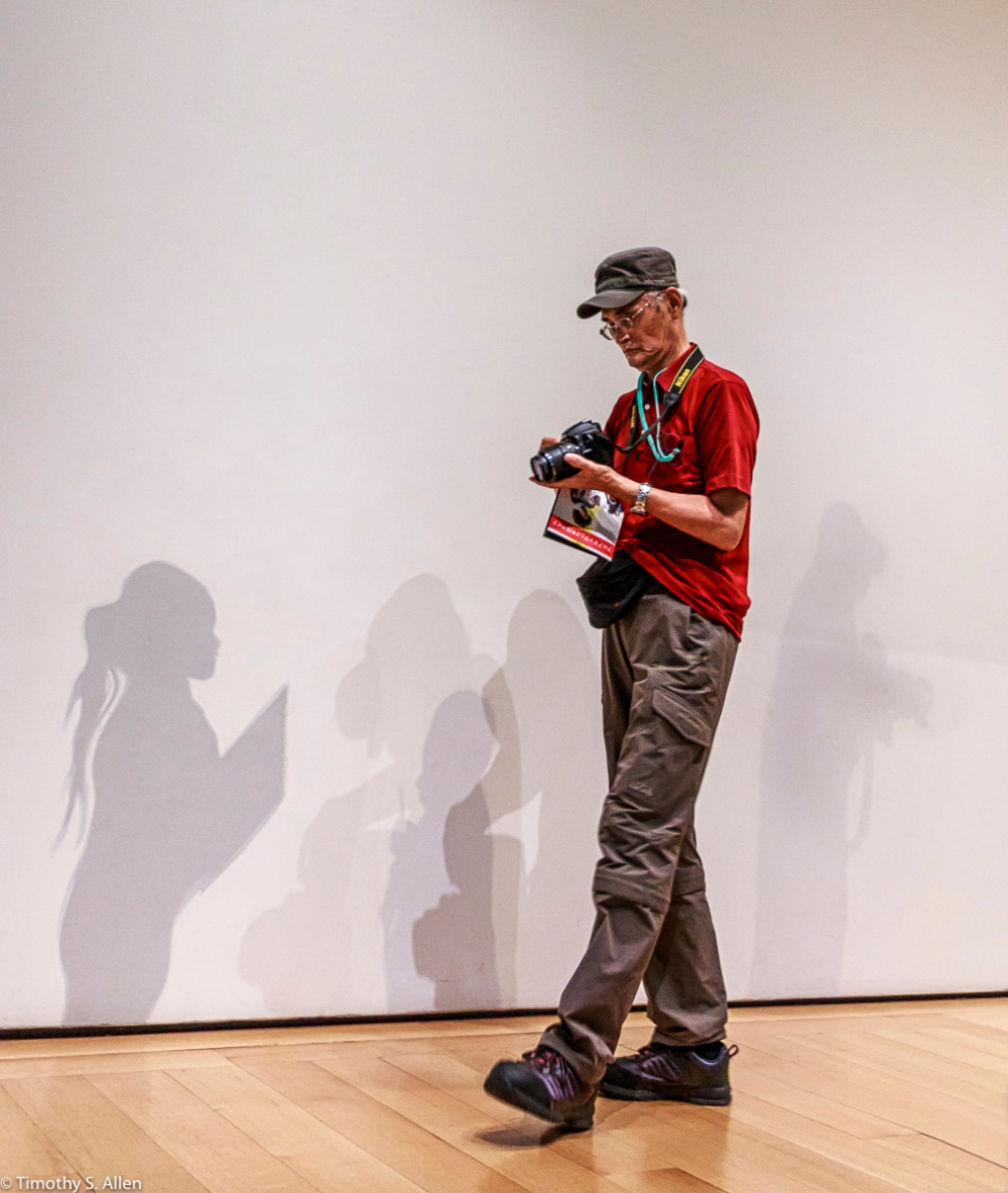 Japanese Visitor to the Museum of Fine Arts, Boston, Contemporary Wing, Eunice and Julian Cohen Galleria, The shadows are by an artists I'm not able to find their name. Boston, MA, August 31, 2018