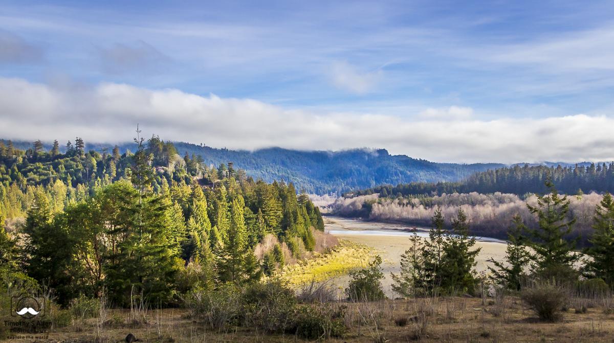 Cottonwood Creek, Mendocino County, California. January 10, 2014.