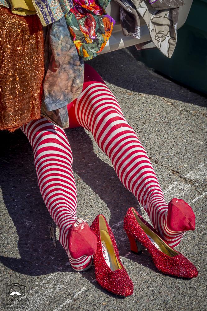 and Dorothy's Ruby Slippers from the Oz books Santa Rosa Flea Market Santa Rosa, CA, U.S.A. October 5, 2014