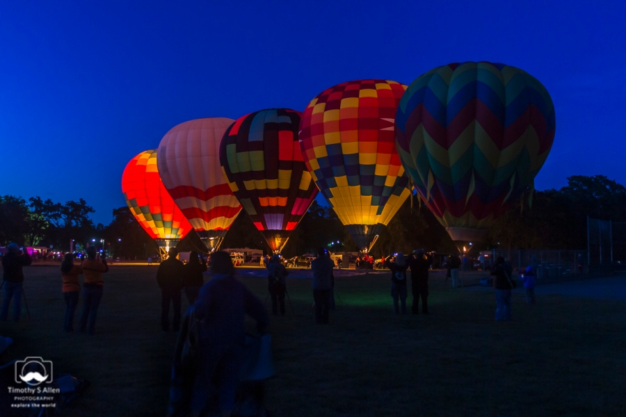 One balloon is aglow to keep it inflated. Three are preparing to turn up the gas and the last is dark having already heated the air enough to remain inflated. All at the Sonoma County Hot Air Balloon Classic. Windsor, CA, U.S.A. June 14, 2014