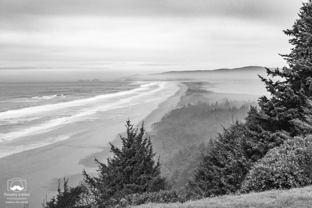 from Cape Lookout Road Central Oregon Coast November 10, 2013